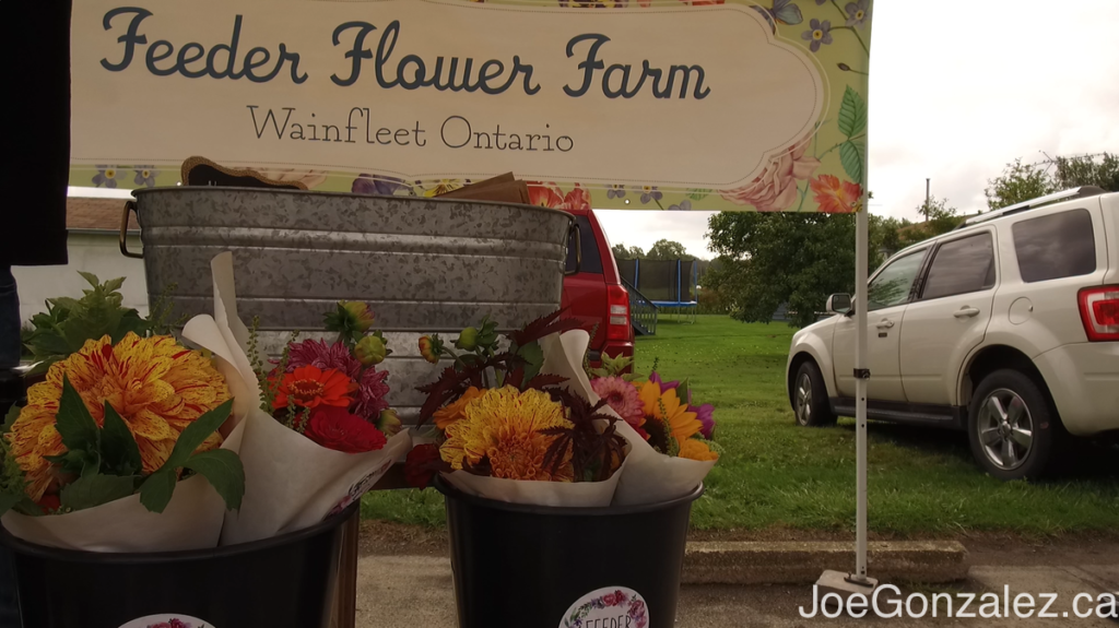 Wainfleet Farmers Market Joe Gonzalez 6