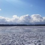 64-Acre-Farm-For-Sale-in-Wainfleet-Joe-Gonzalez